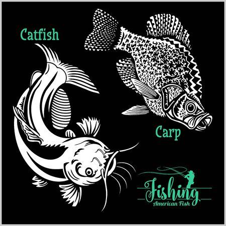 La pêche du poisson-chat et de la carpe aux États-Unis isolée sur fond noir