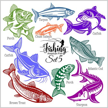 American Fish - vector set 5 for creative design, t-shirt, badge and logo. Isolated on black. Vettoriali