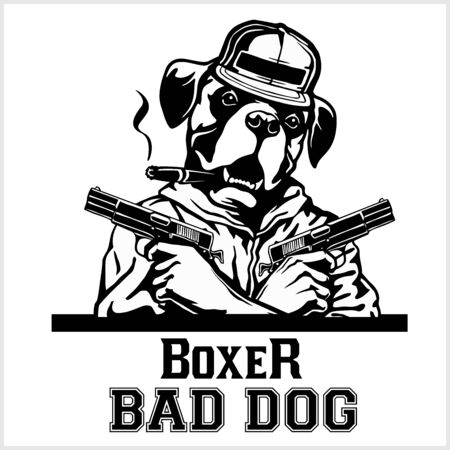 Boxer with two guns and cigar - Boxer gangster. Head of angry Boxer