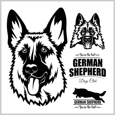 Shepherd Dog Portrait - vector illustration on white.