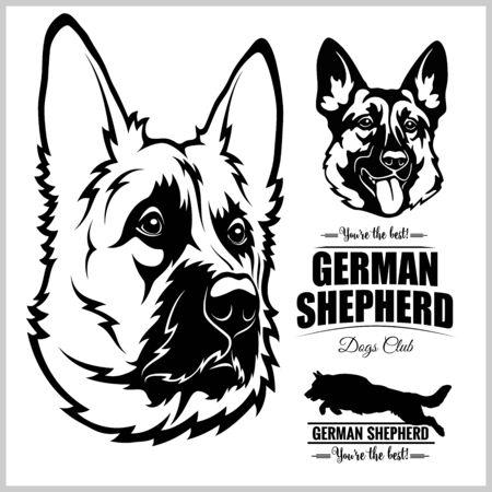 Shepherd Dog Portrait - vector illustration on white.