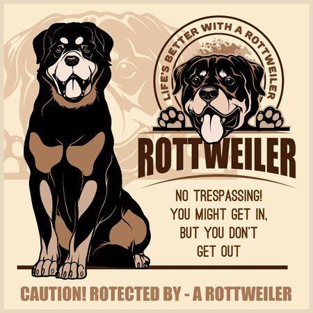 Rottweiler - conjunto de vectores para camiseta, insignias de plantilla en la luz Ilustración de vector