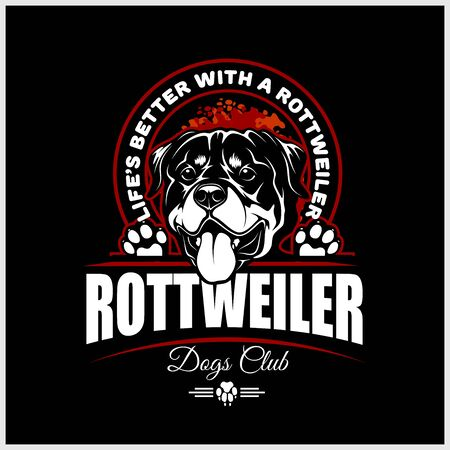 Rottweiler - vector illustration for t-shirt