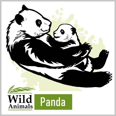 Panda bear with a baby in monochrome style on white