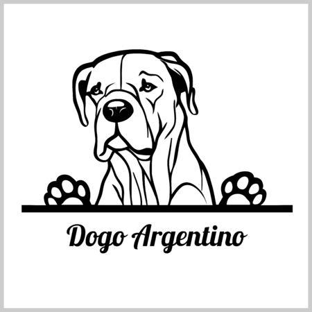 dog head, Dogo Argentino breed, black and white illustration
