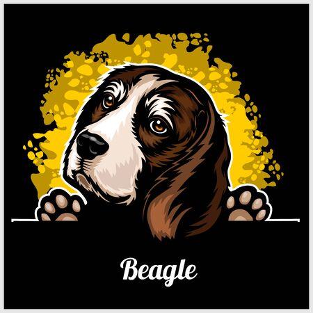 Color dog head, Beagle breed on black background