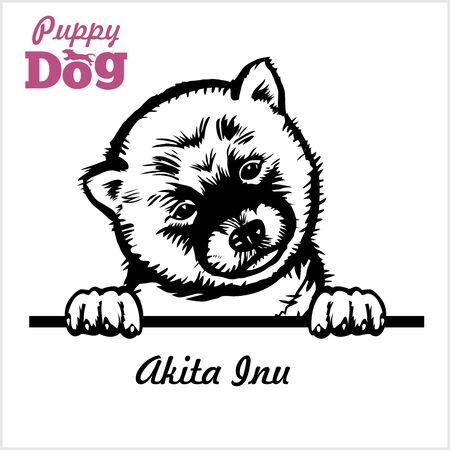 Puppy Akita Inu - Peeking Dogs - breed face head isolated on white