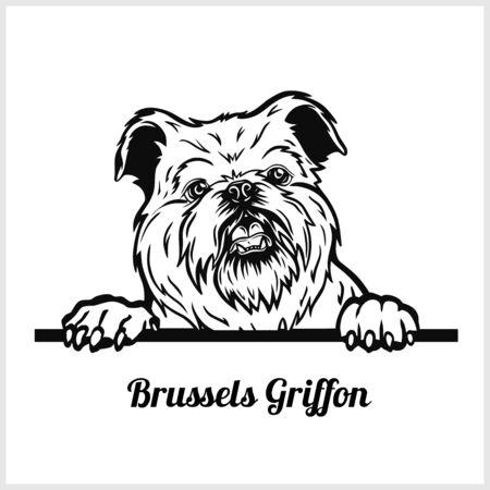 Brussels Griffon - Peeking Dogs - breed face head isolated on white Векторная Иллюстрация