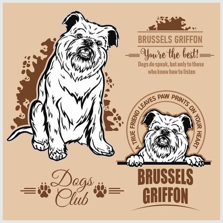 Brussels Griffon - vector set for t-shirt, logo and template badges