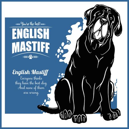 English Mastiff - vector template for t-shirt, logo and badges