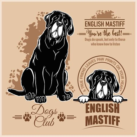 English Mastiff - vector set for t-shirt, logo and template badges