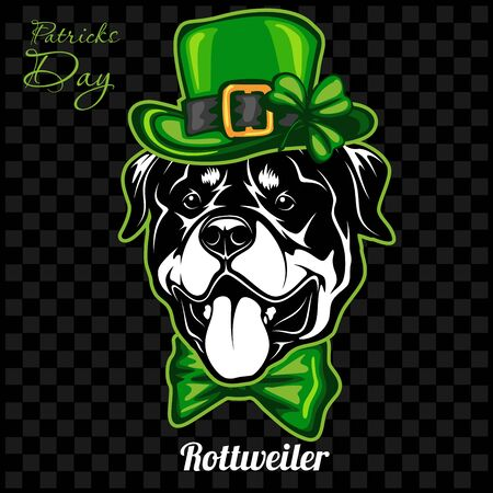 Head of a Rottweiler Dog and elements of St. Patricks Day. Vector illustration isolated on dark