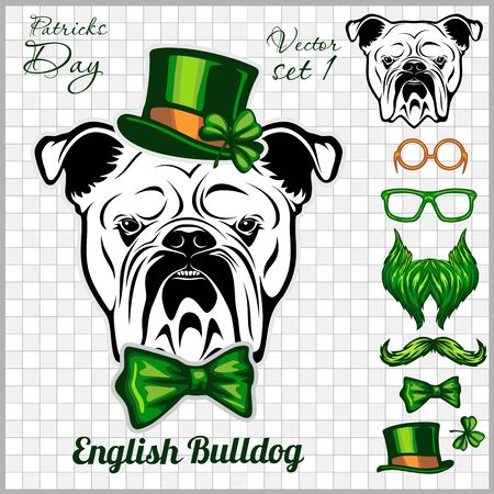 English Bulldog Dog and design elements of St. Patricks Day - Template for St. Patricks Day. Vector illustration isolated on light Illustration