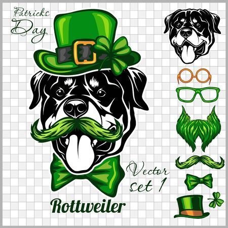Rottweiler Dog and design elements of St. Patricks Day - Template for St. Patricks Day. Vector illustration isolated on light Ilustracja