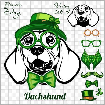 Dachshund Dog and design elements of St. Patricks Day - Template for St. Patricks Day. Vector illustration isolated on light