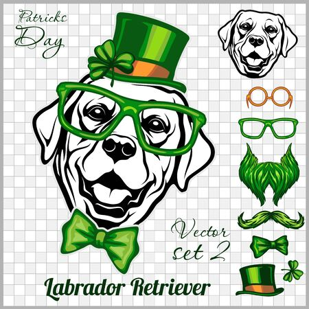 Labrador Retriever Dog and design elements of St. Patricks Day - Template for St. Patricks Day. Vector illustration isolated on light