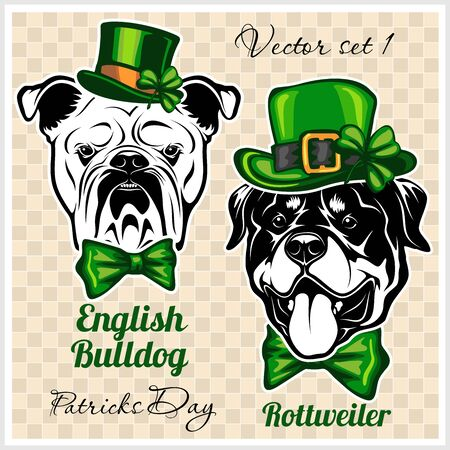 English Bulldog and Rottweiler - Dog Heads and elements of St. Patricks Day. Vector designs