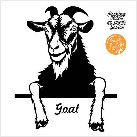 Peeking Goat - Cheerful Goat peeking out - face head isolated on white - vector stock