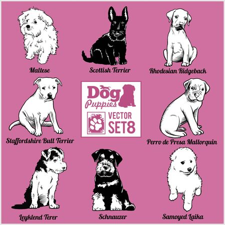 Dog Puppies - Vector set. Funny dogs puppy pet characters different breads doggy. Иллюстрация
