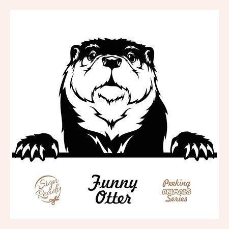Peeking Otter - Funny Otter peeking out - face head isolated on white Ilustração