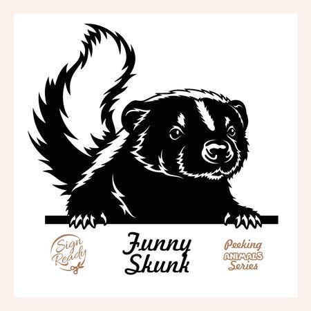 Peeking Skunk - Funny Skunk peeking out - face head isolated on white