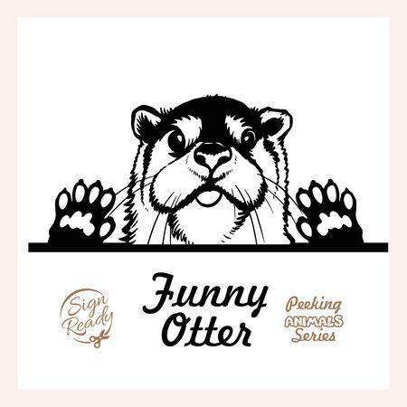 Peeking Otter - Funny Otter peeking out - face head isolated on white