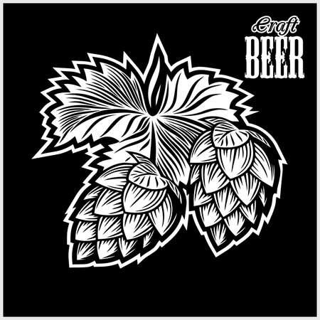 Hops for brewing - vector illustration on black
