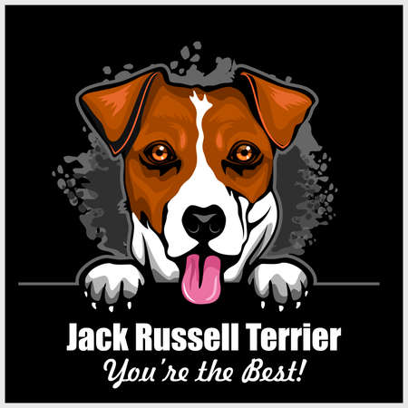 Jack Russell Terrier - Peeking Dogs - color illustration - breed face head isolated on black - vector stock