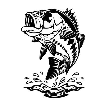 Largemouth bass in attack - template for fishing design isolated on white