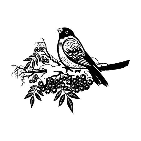 Bullfinch bird - Winter Bird, Wildlife Stencils for Christmas Bird Decor, winter decor, Clipart Vector