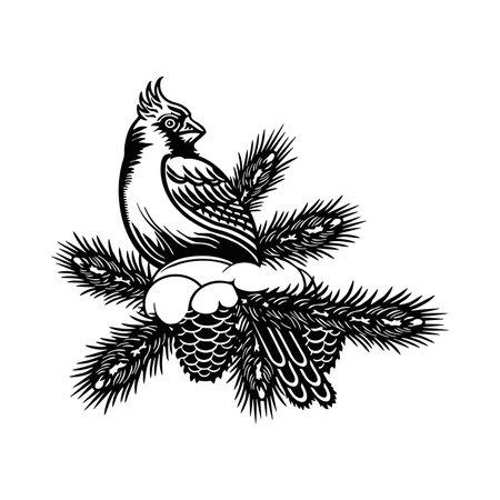 Northern Cardinal bird - Winter Bird, Wildlife Stencils for Christmas Bird Decor, winter decor, Clipart Vector 向量圖像