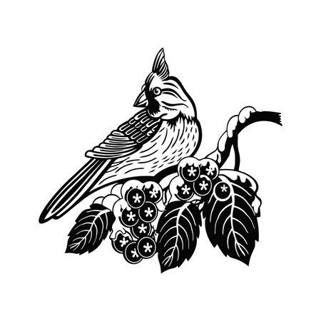 Tufted Titmouse bird - Winter Bird, Wildlife Stencils for Christmas Bird Decor, winter decor, Clipart Vector