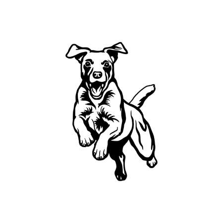 Jack Russell Terrier dog - vector isolated illustration on white background