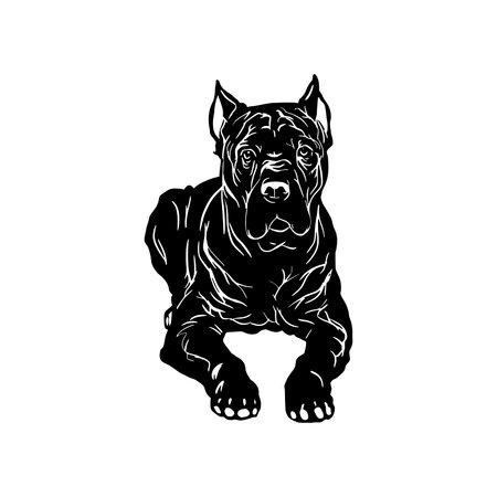 Cane Corso dog - Lying Cane Corso vector stock isolated illustration on white background.