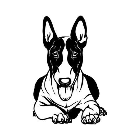 Bull Terrier dog - Lying dog vector stock isolated illustration on white background.