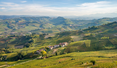 cuneo province: Langhe and Roero hills landscape vineyards, Barolo, Dolcetto, Barcaresco wineyards. Cuneo province, Piedmont, Italy.