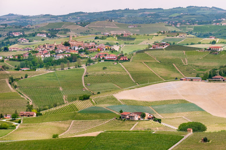 Landscape Langhe hills vineyards. Viticulture near Barolo and La Morra, Piedmont, Italy,  heritage. Barolo, Nebbiolo, Dolcetto, Barbaresco red wine.