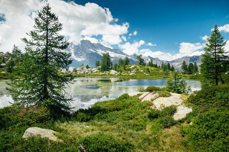 Mountain lake landscape and green trees around. Sense of freedom. Gran Paradiso National Park, Bellagarda lake, Ceresole Reale, Piedmont, Italy