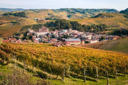 Barolo village, view from a vine. Langhe hilly landscape of vineyards in autumn. Viticulture of Dolcetto, Nebbiolo and Barbera red wine. Tourism in Europe, travel destination. Piedmont, Italy landmark.
