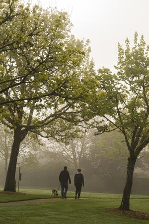 Ein Paar geht morgens mit dem Hund durch den nebligen Park. Standard-Bild - 76577436