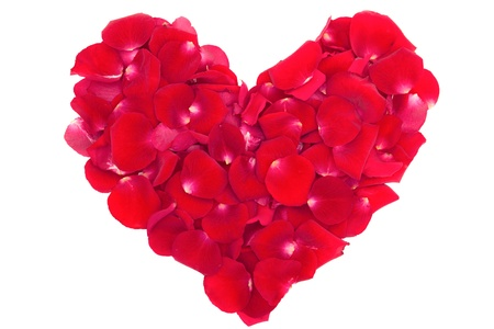 heart of the petals of red roses isolated on white