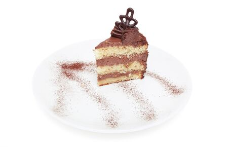 piece of cake with chocolate cream on a plate isolated on white