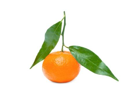 Tangerine on a Tree branch isolated on white 版權商用圖片