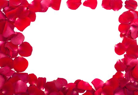frame of red rose petals isolated