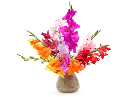 bouquet of colored gladioli isolated on white photo