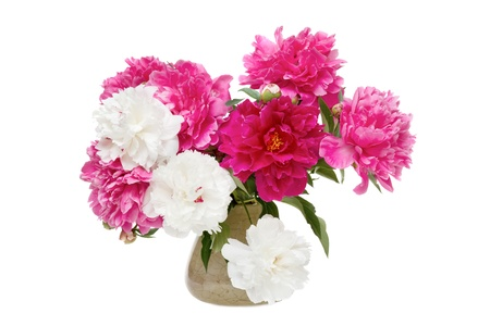 Beautiful bouquet of spring flowers - peonies Stock Photo