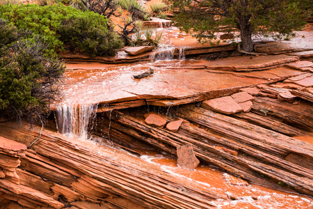 Flash floods are usually thought of as huge, destructive forces, but this small river delivers precious water to plants and animals in the fragile desert ecosystem. A short rain storm sprinkled the desert and generated this small flood in the South Coyote
