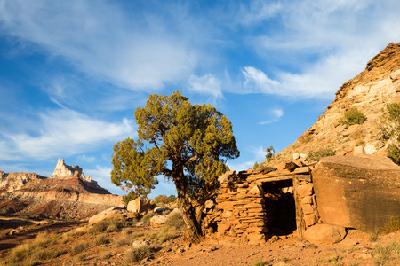 Small building between a boulder and large juniper tree below Temple Mountain in Southern Utah. The mining camps in the San Rafael Swell area produced ore that was sent to France for Madame Curies expirements in radium research.