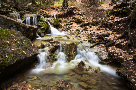The water of Dead Horse Creek cascading over rocks and logs below Hanging Lake near Glenwood Springs, Colorado. Several yellow aspen leaves have fallen around the stream.
