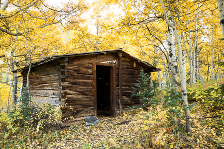 the miners: A small cabin in the outskirts of the Ashcroft Townsite near Aspen, Colorado. Many aspen trees suround the cabin in yellow leaves Stock Photo